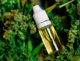 cbd oil for anxiety in kids
