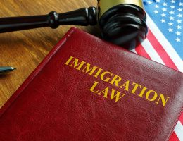 hire-immigration-lawyer-for-case